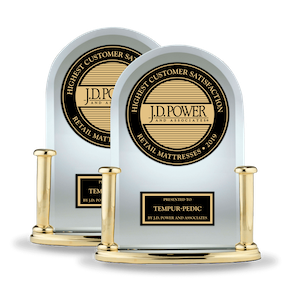 2019 JD Power Award Trophies