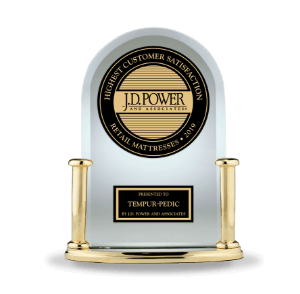 2019 JD Power Award Trophies