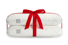 Give the gift of a pillow with our 2 for $99 deal