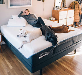 A woman sitting on a Tempur-Pedic mattress with her three dogs